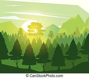coloré, arbres, pin, fond, aube, paysage