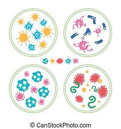 coloré, bacteries, dans, boîte de pétri