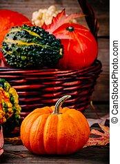 coloré, bois, feuilles, potirons, fond, automne