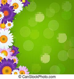 coloré, cadre, gerbers, bokeh, vert, fleurs