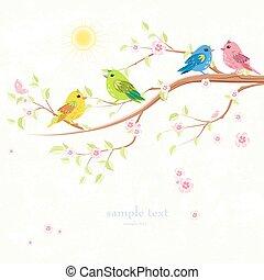 coloré, enamored, branche arbre, invitation, oiseaux, carte