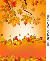 coloré, eps, automne, leafs., 8, carte