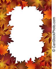 coloré, feuilles, automne, blanc, frontière, sur