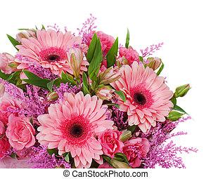 coloré, fragment, isolé, bouquet, roses, fond, blanc
