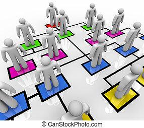 coloré, gens, -, diagramme, boîtes, organisationnel