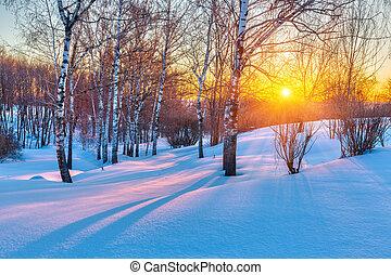 coloré, hiver, coucher soleil