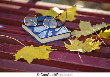 coloré, incorporé, feuilles, parc, il, banc, automne, mensonges, livre