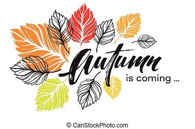 coloré, leaves., illustration, automne, vecteur, conception, fond, automne