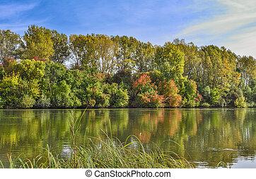 coloré, paysage rivière, banque, automne