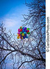 coloré, prague, arbre, collé, clair, ballons, tas