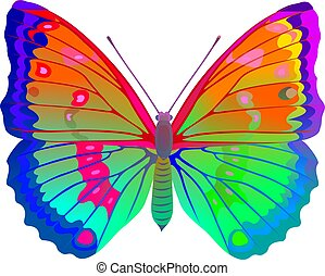 Color butterfly