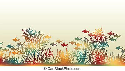 color, coral