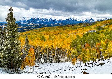 color de la caída, y, nieve, en, colorado