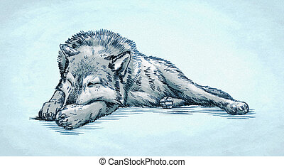 color engrave ink draw wolf illustration - color engrave ink...