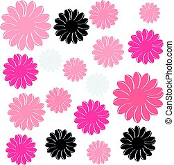 Color flowers isolated on white background