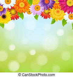 Color Gerbers Flower Frame