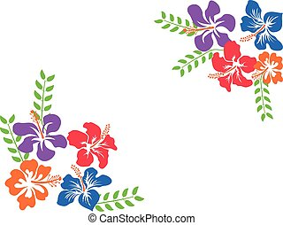 color Hawaii hibiscus background