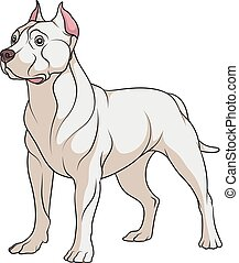 Color illustration of a pit bull dog. Isolated vector object.