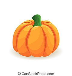 Color illustration of pumpkin. Element for your design for the decoration of the fall holidays, thanksgiving, harvest, Halloween. Vector illustration.