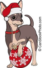Color image of a small dog, a brown chihuahua in a red Christmas hat with a Christmas tree toy. Isolated vector object on a white background.