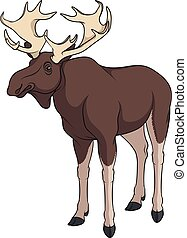 Color image of elk, moose. Isolated vector object. - Color...