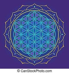 color mandala sacred geometry illustration - vector colored...