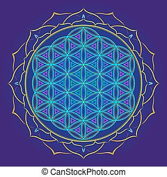 color mandala sacred geometry illustration - vector colored...