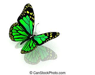 color mariposa, verde