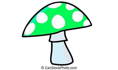 color mushroom
