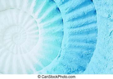 Color of ammonite prehistoric fossil. - Color of ammonite...