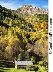 color of autumn at the mountain with barn