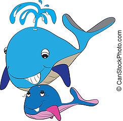 color page whale