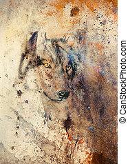 color, resumen, lobo, plano de fondo, pintura, efecto