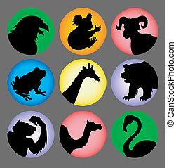 color, siluetas, 2, animal