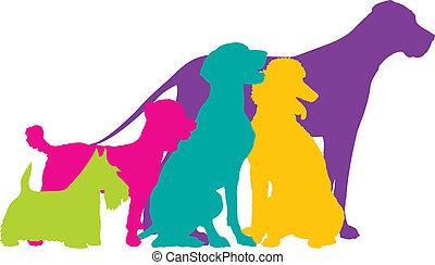 color, siluetas, perro