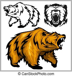 Color vector illustration of bear Grizzly