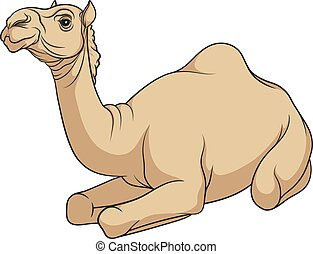 Color vector image of a camel