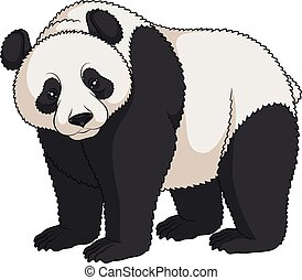 Color vector image of a panda. Isolated object.