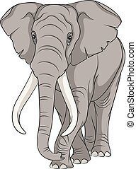 Color vector image of an elephant.