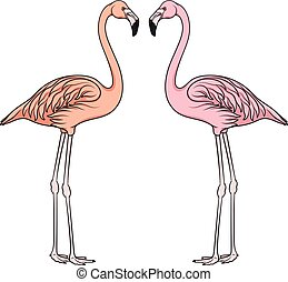 Color vector image of flamingo. Isolated object.