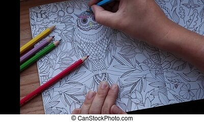 Color video of a hand holding a pencil and coloring an adult coloring book. close-up