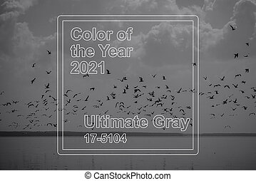 Color year 2021 ultimate gray on the background of the sea and sky