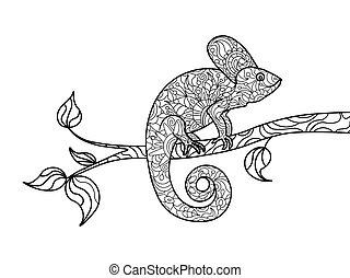 coloração, adultos, camaleão, vetorial, livro animal