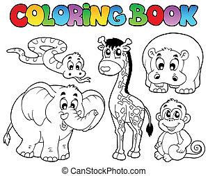 coloração, animais, livro, africano