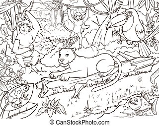 coloração, animais, livro, floresta, caricatura, selva