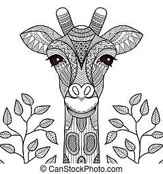 coloração, giraff, página
