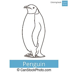 coloração, pássaro, livro, vetorial, aprender, pássaros, pingüim