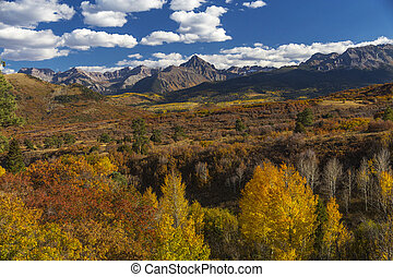 Colorado Aspen Fall Color in the Rocky Mountains, Kebler Pass