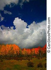Colorado Color - Setting sun enhances beautiful autumn...