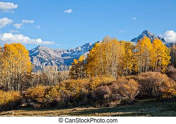 Colorado Fall Mountain Landscape